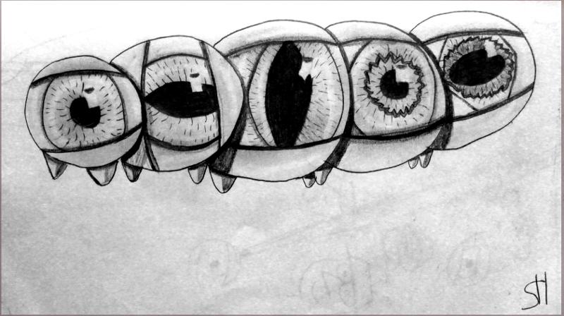 Eine Zeichnung die ich auf dem PCT gezeichnet habe