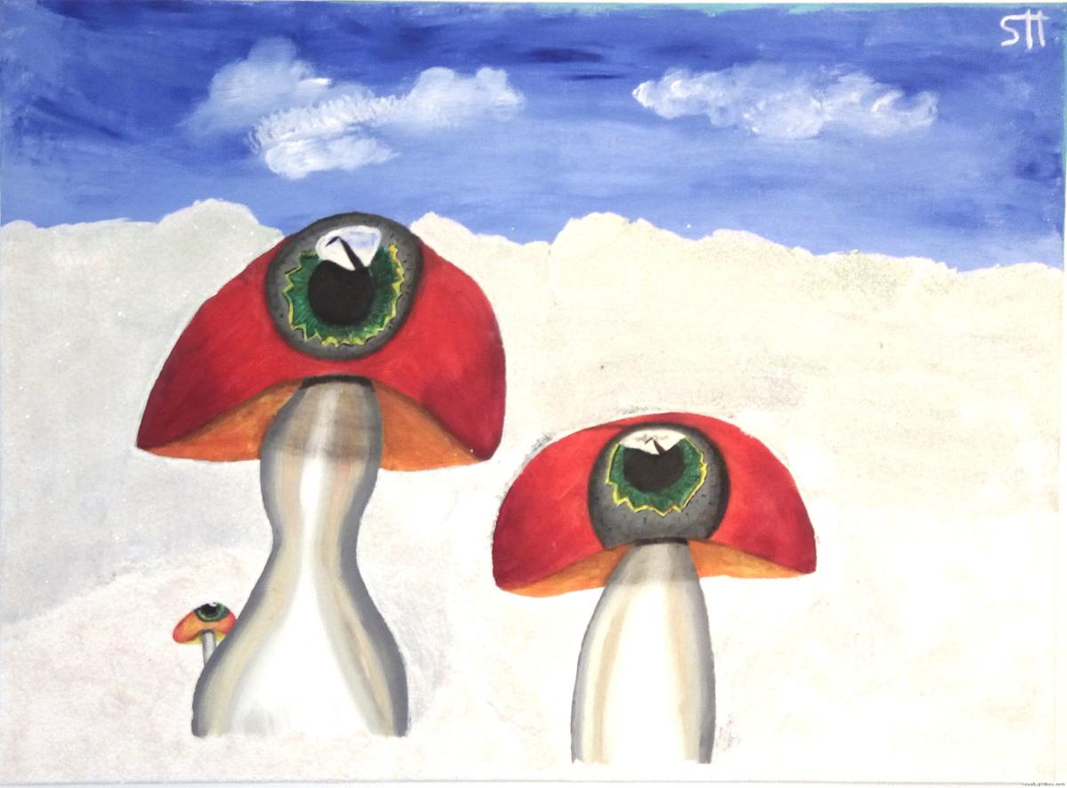 Augenpilz Familie